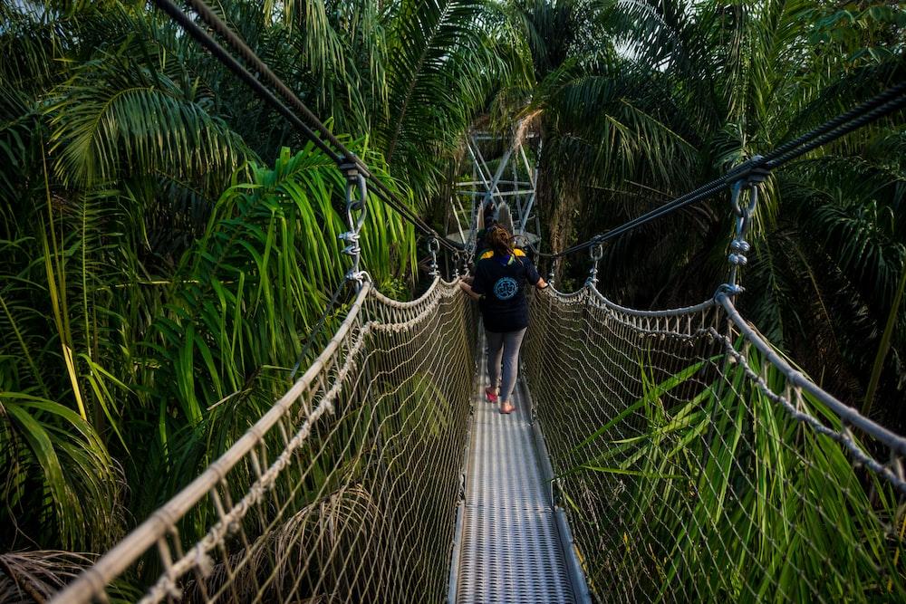 unknown person walking on hanging bridge