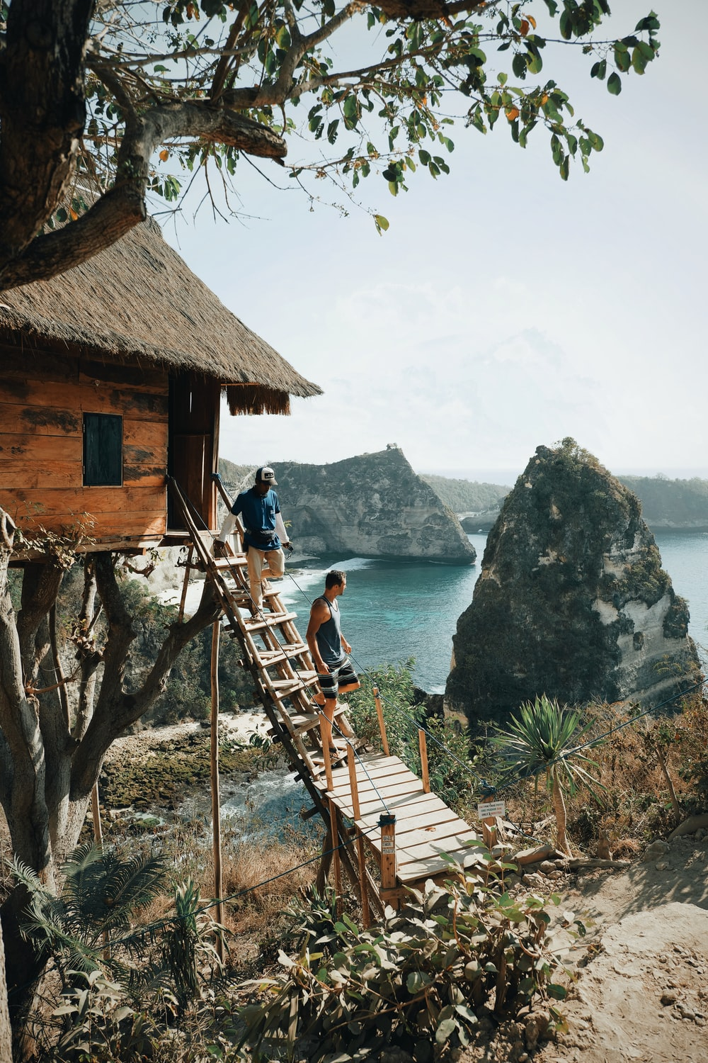 two men walking down a ladder from a tree house