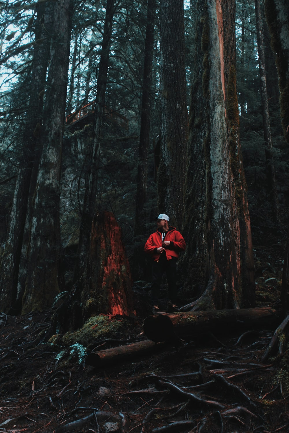 man in forest in red jacket