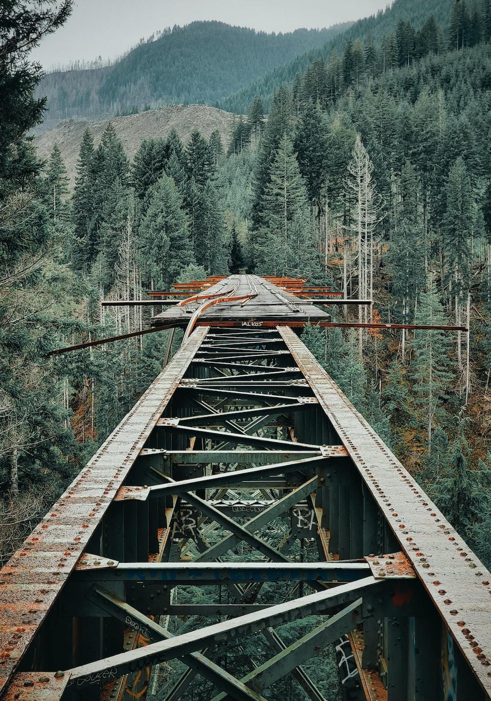 brown iron bridge between trees in the mountain