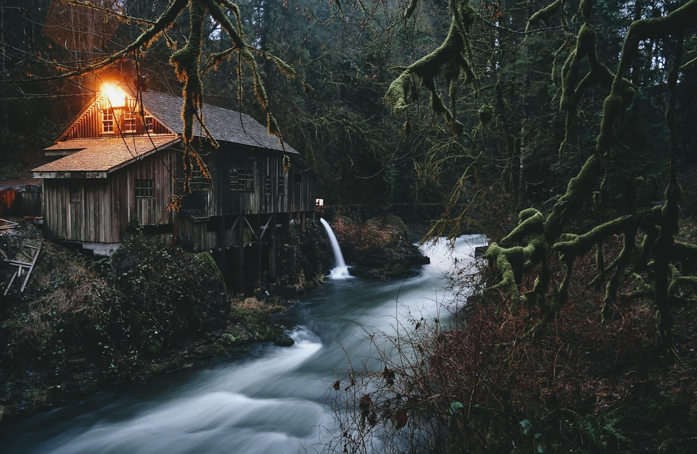 brown cabin in forest