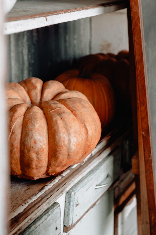 pumpkin on white shelf