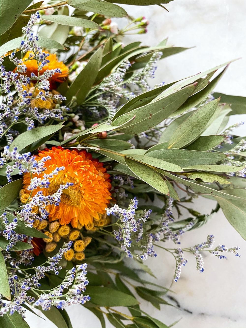 selective focus photography of orange and gray petaled flower centerpiece