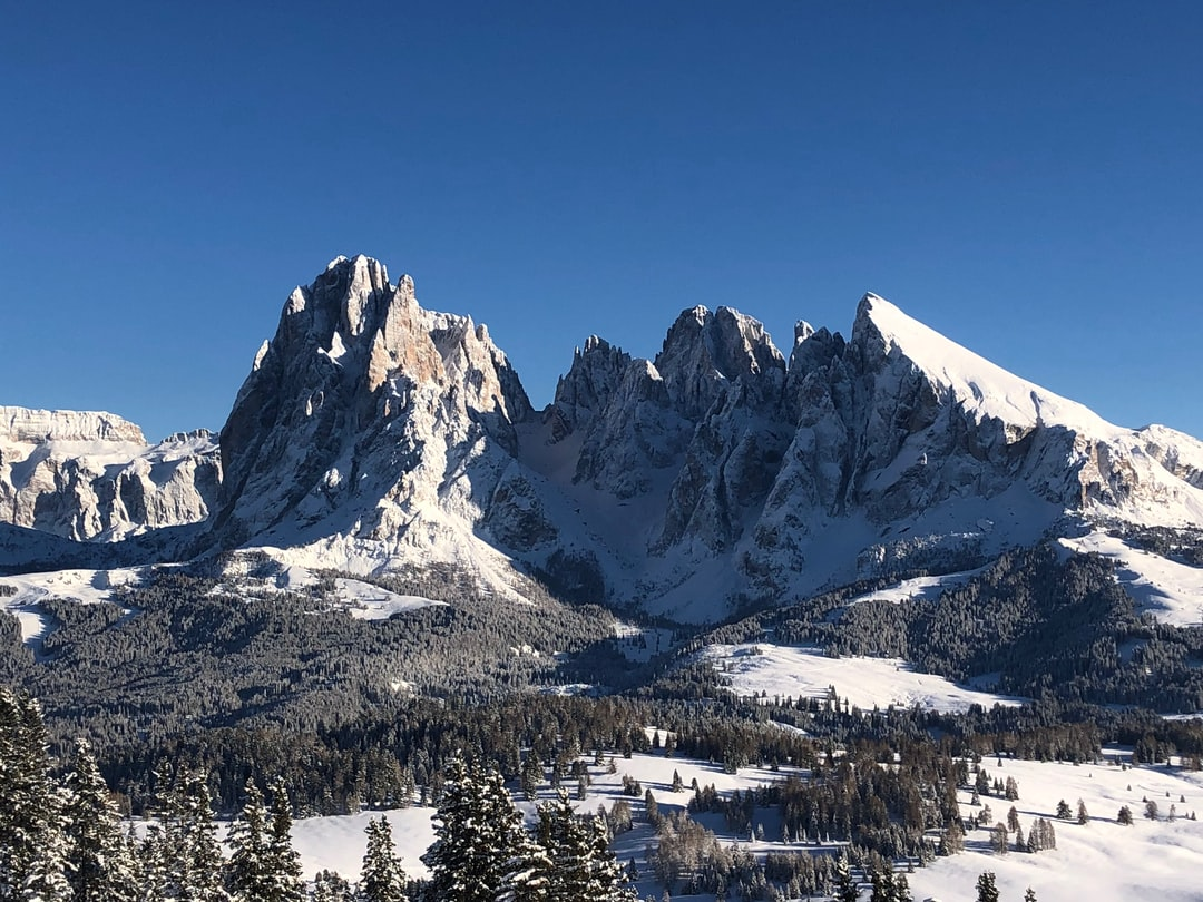 Rare full snow view on a February afternoon over Sella, Lang- and Plattkofel (Sasslong y Sas plat) from Mont Seuc Seiseralm, high above St. Ulrich in Val Gardena Gröden, Südtirol, Italy. The mountain on the left is the Sella, in center the Sasslong or Langkofel, both just shy of 3200 m a.s.l.