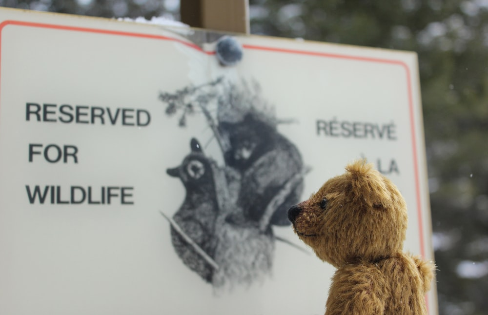 reserved for wildlife signage