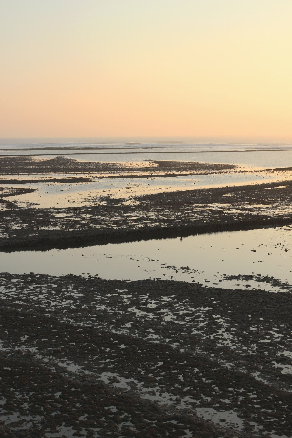 view of low tide body of water during golden hour