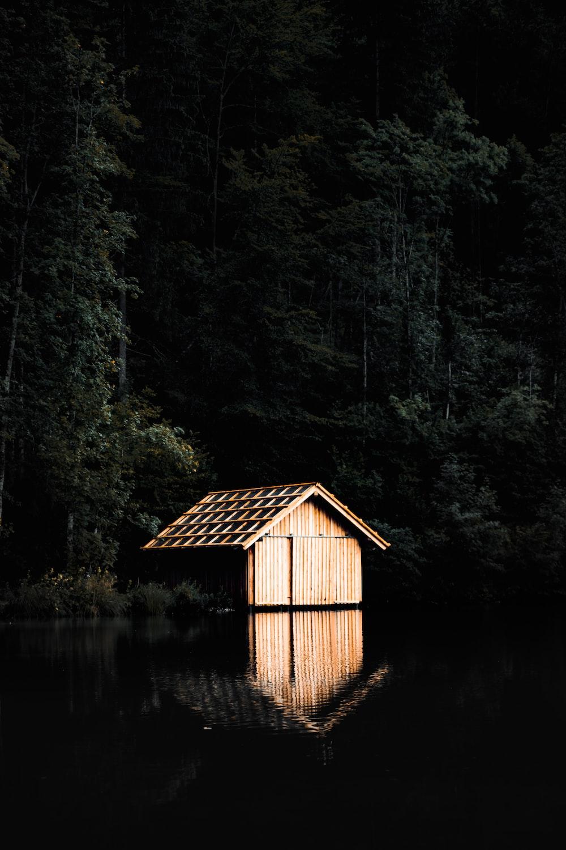 brown wooden cabin near lake