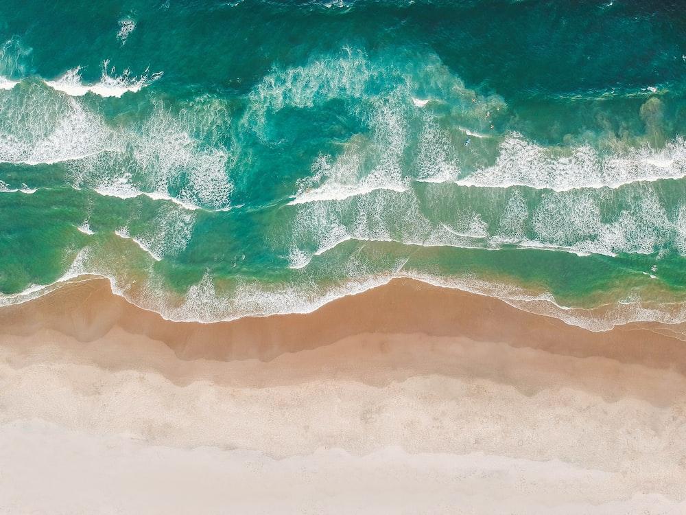 bird's eye photography of shoreline