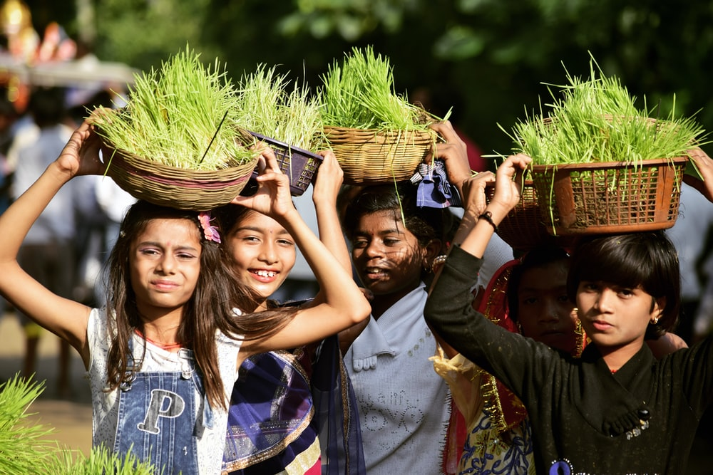 selective focus of group of people carrying grasses