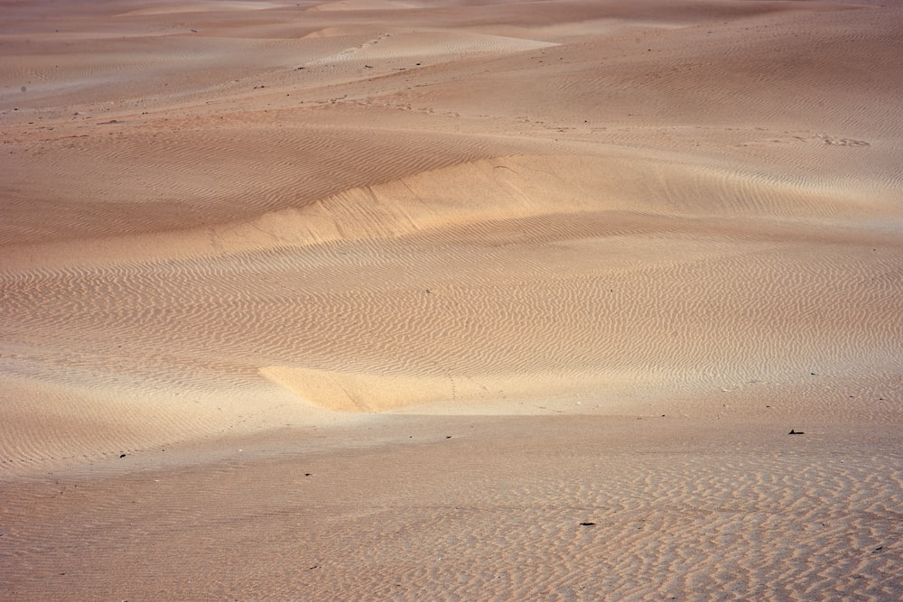 brown desert during daytime