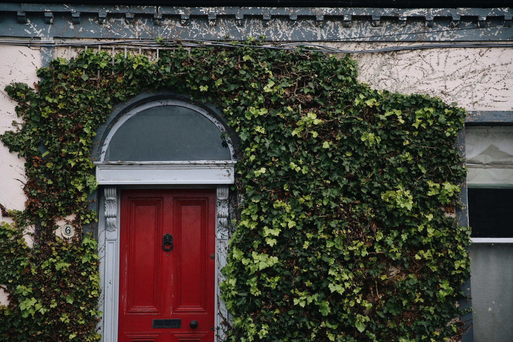 Red door in Dublin, Ireland