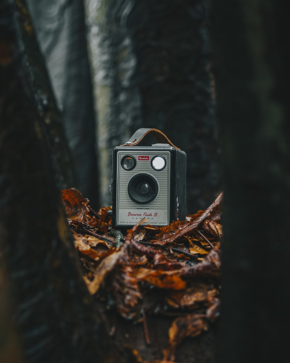 grey speaker under trees