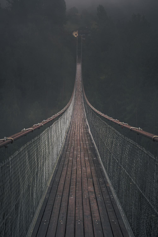 brown hanging bridge in forest