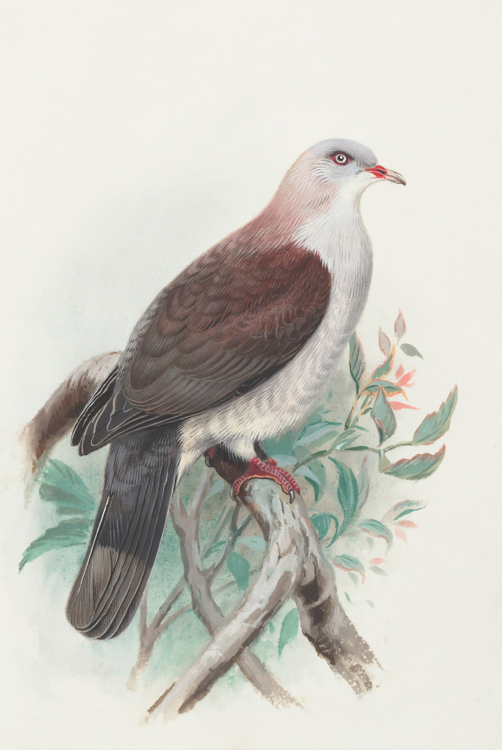 brown and white bird on tree branch painting