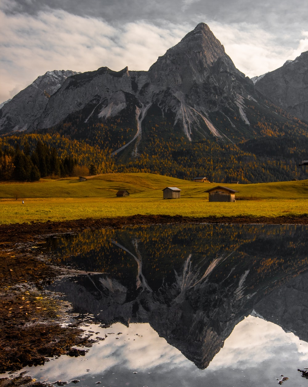cabins in field