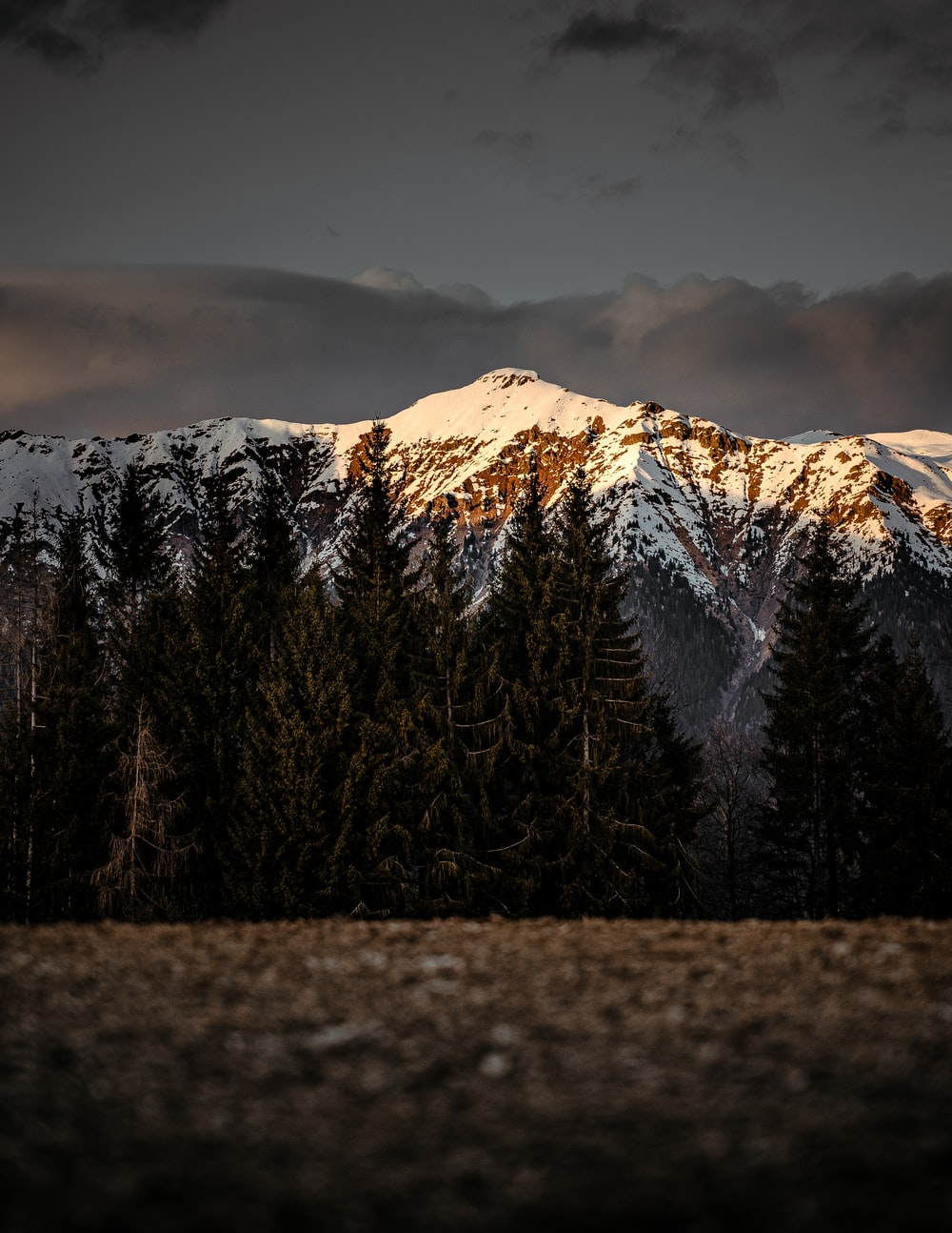 landscape photography of field viewing mountain covered with snow during daytime