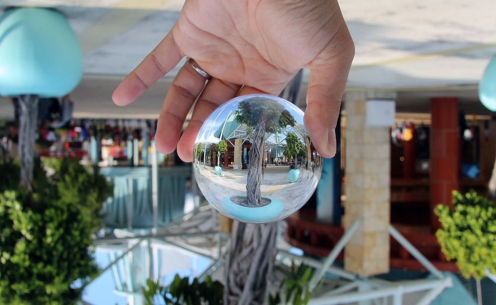 reflection of tree on mirror ball