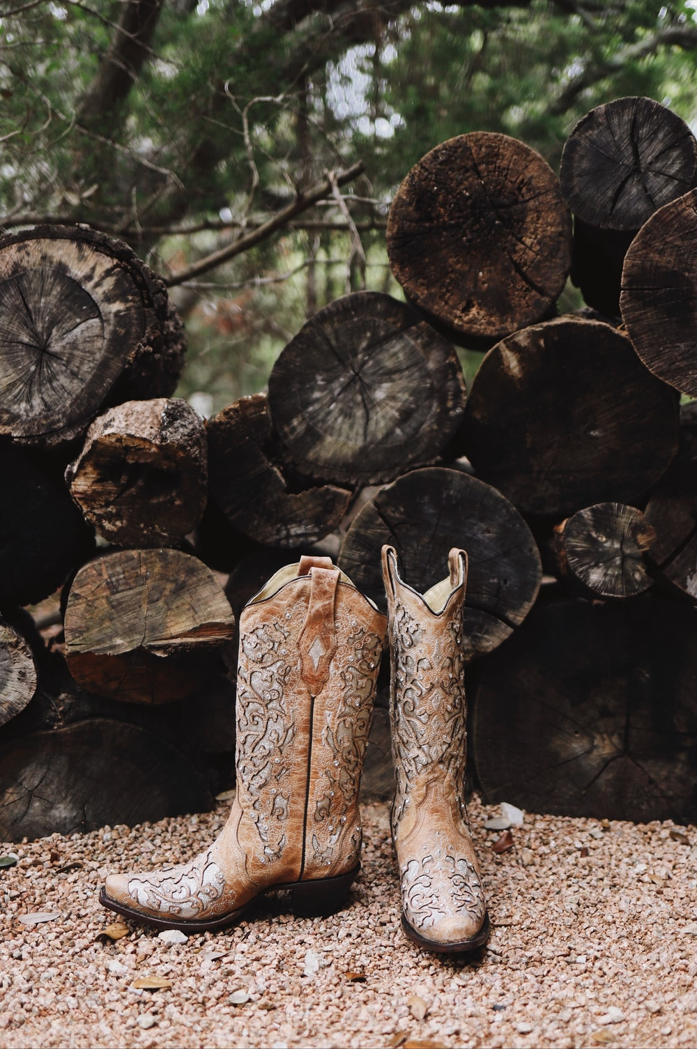 pair of brown leather cowboy boots near cut logs