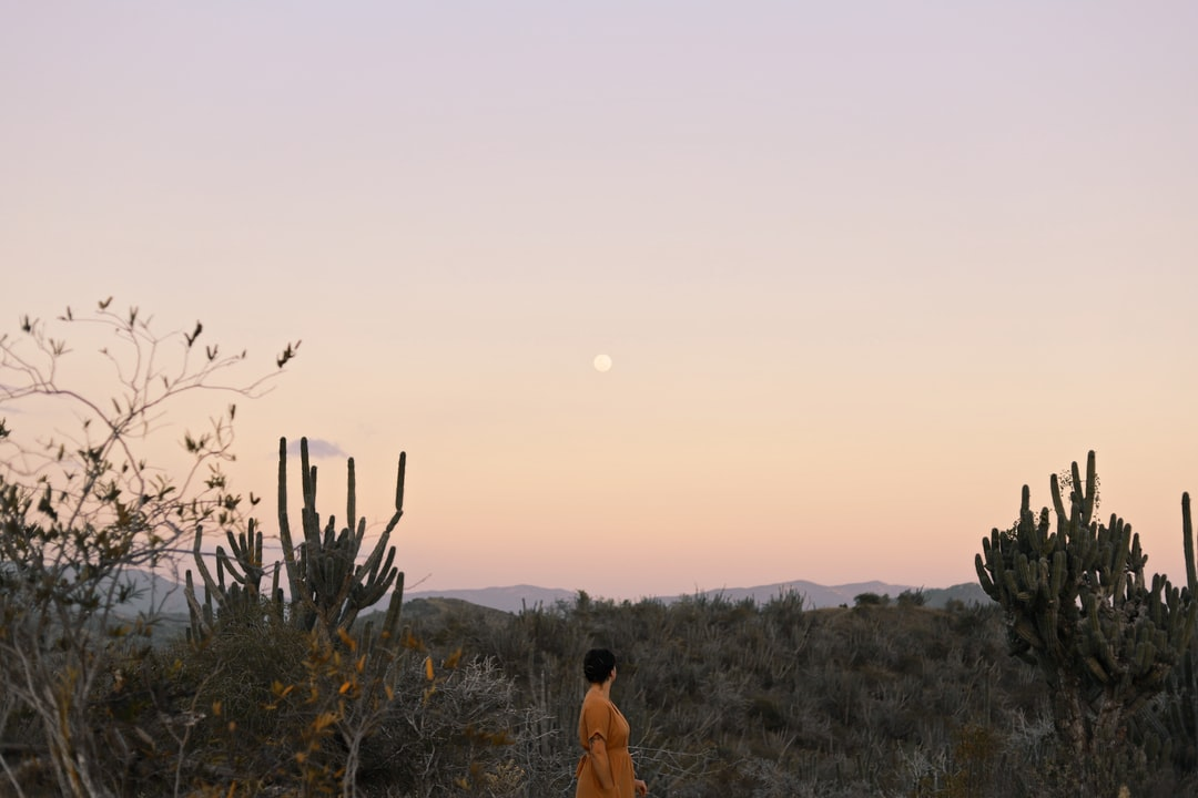 Woman Standing Near Trees - unsplash