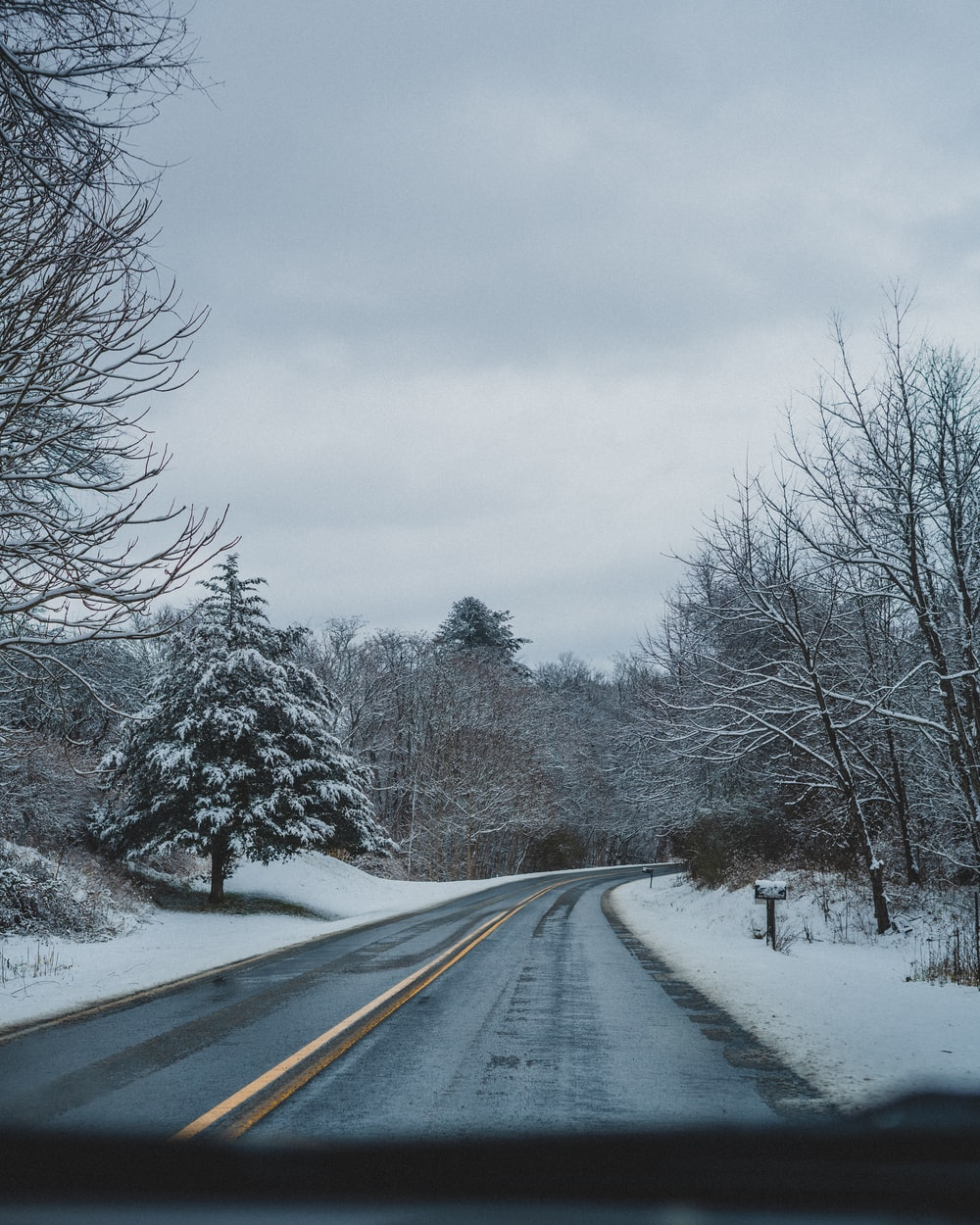 field and trees covered with snow near road during daytime