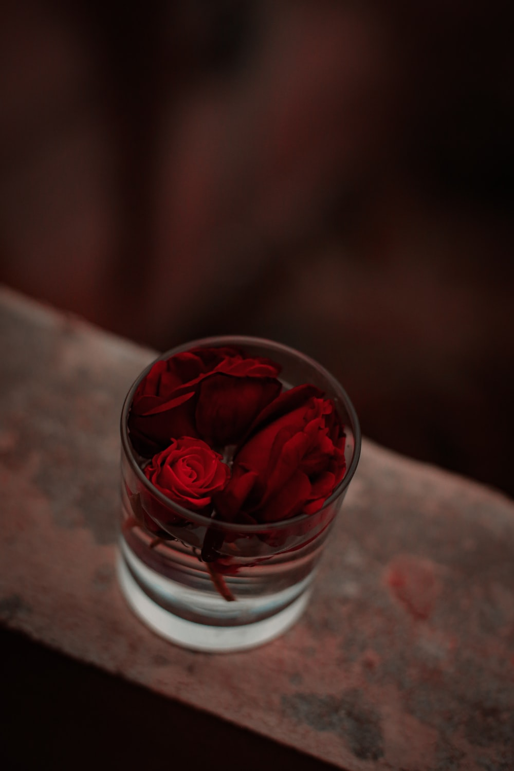 shallow focus photo of red flowers in clear glass cup