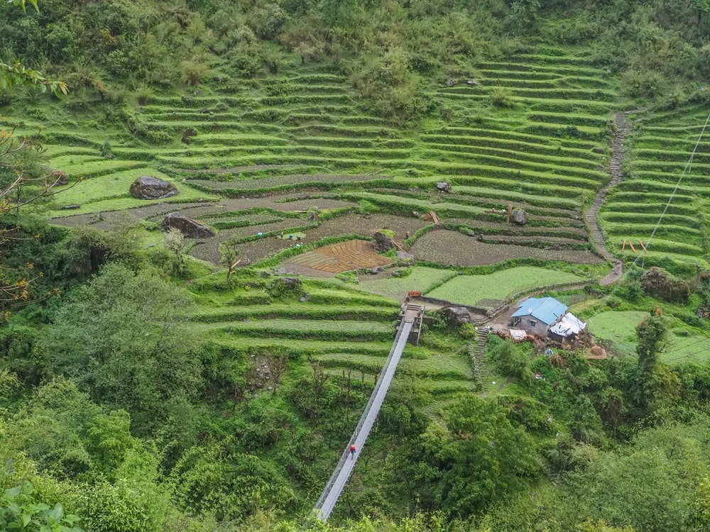 aerial photography of Banaue Rice Terraces