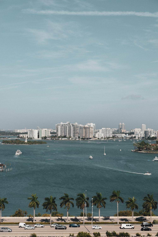 bird's eye photography of city near body of water