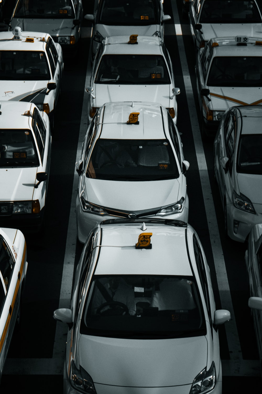 line of white vehicles