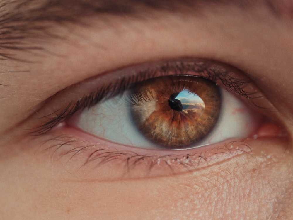 closeup photo of person's eye iris, eye pupil, and eye cornea