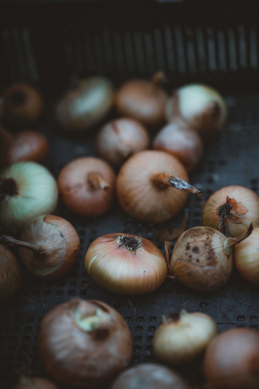 white onion bulbs