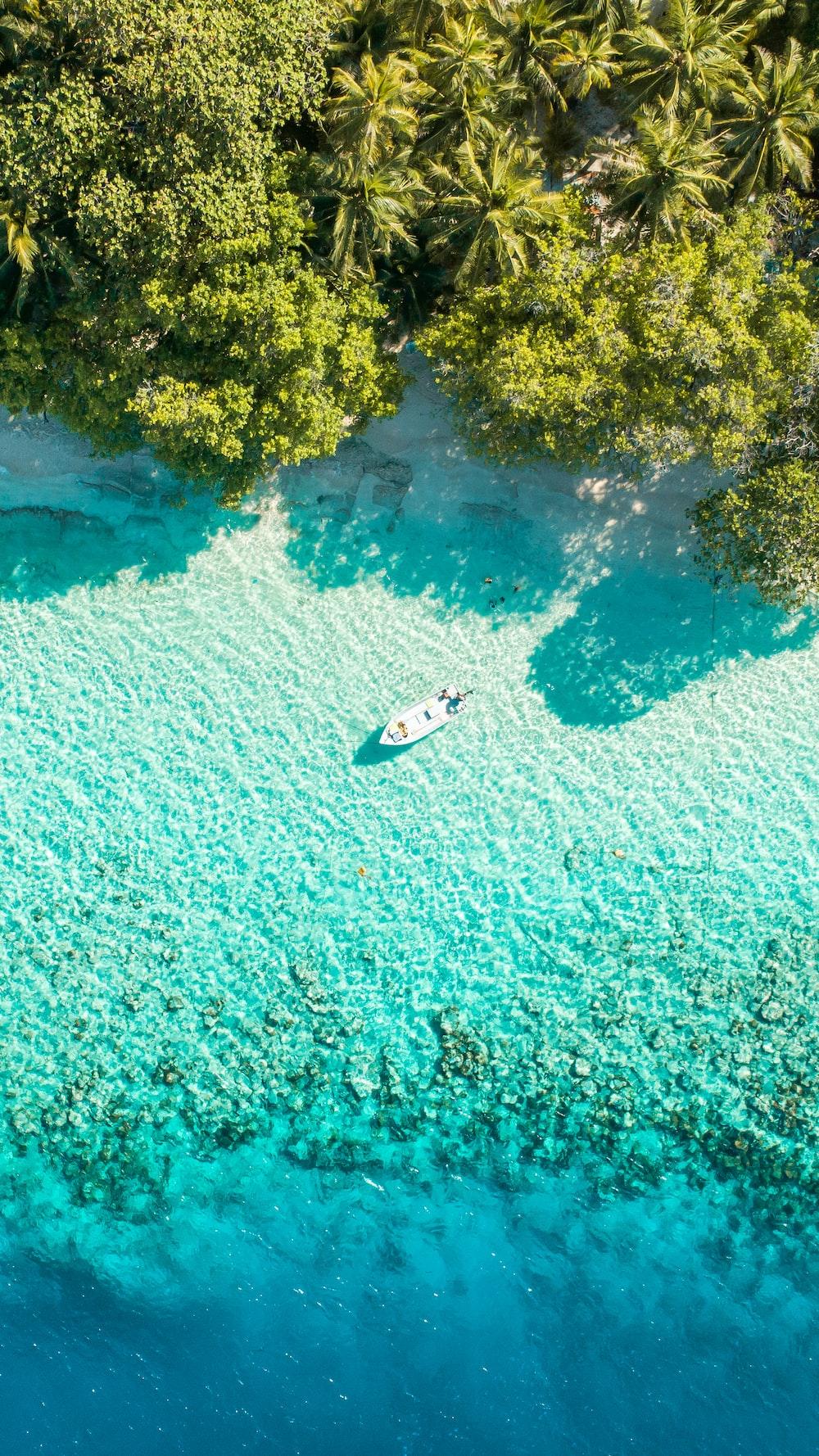 boat near shore