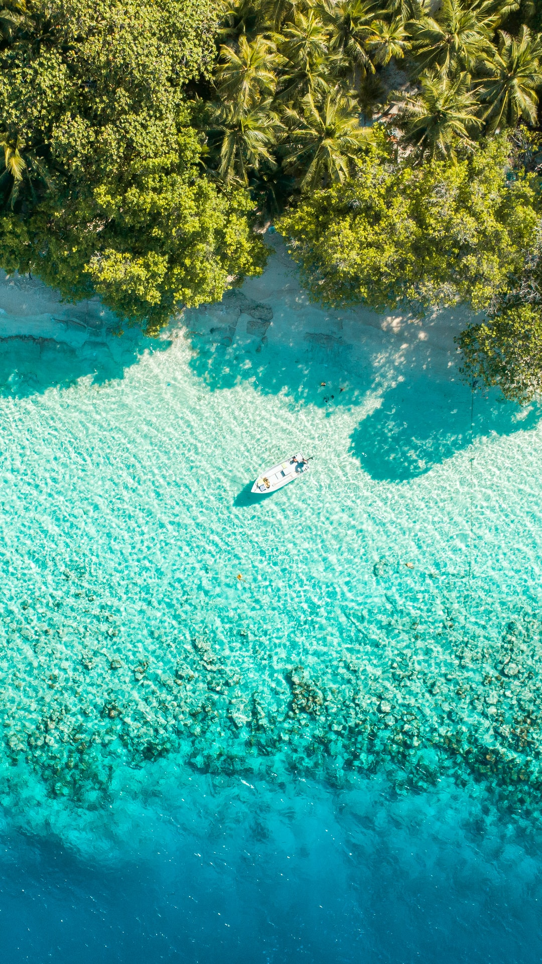 """See the beauty of B.Kendhoo a.k.a """"United Kendhoo - UK"""" with pristine blue lagoon and lofty palms 😍🌴"""