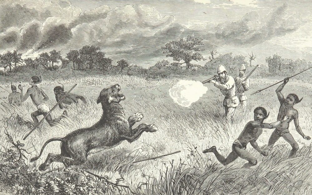 people hunting tiger charcoal painting