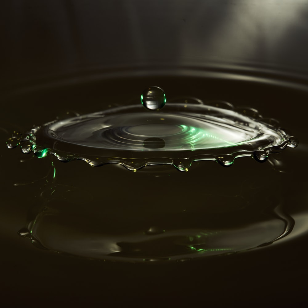 shallow focus photo of water droplets