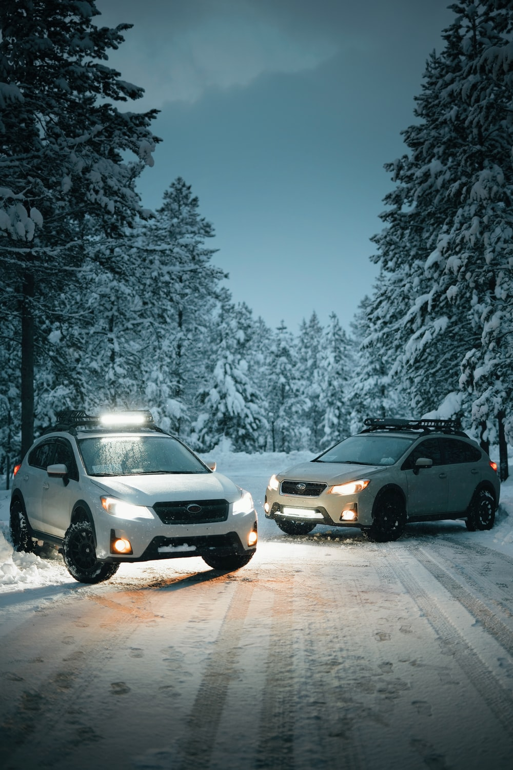 two vehicles parked between trees