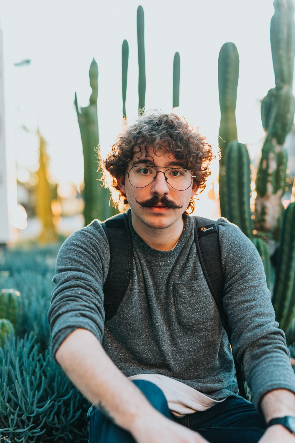selective focus photography of gray shirt sitting beside cacti