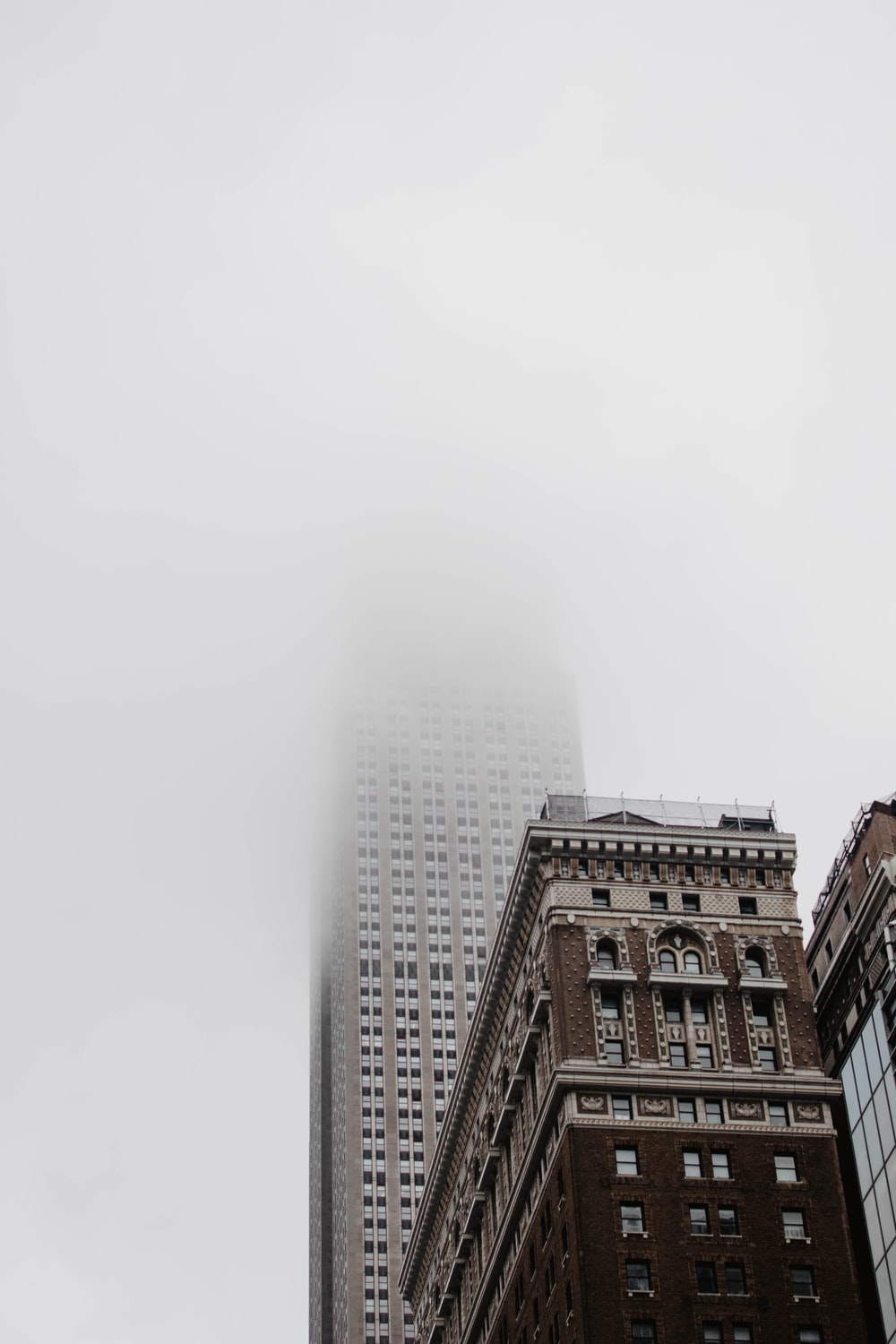 high0rise building covered with fog