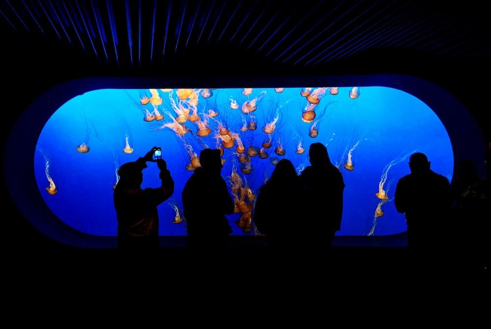 five people standing near aquarium