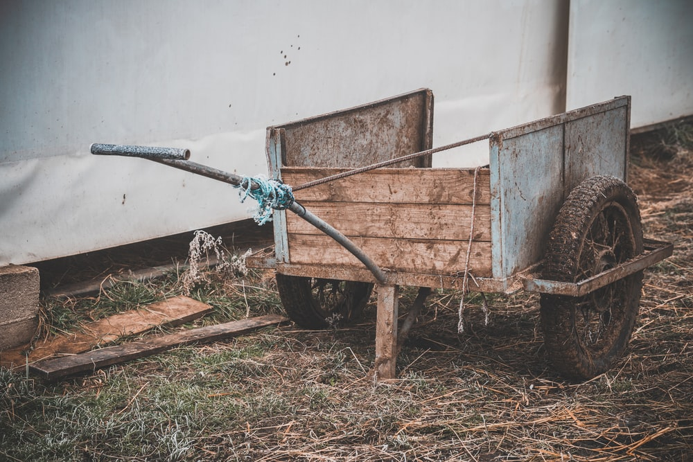 selective focus photography of pull wagon beside white walll
