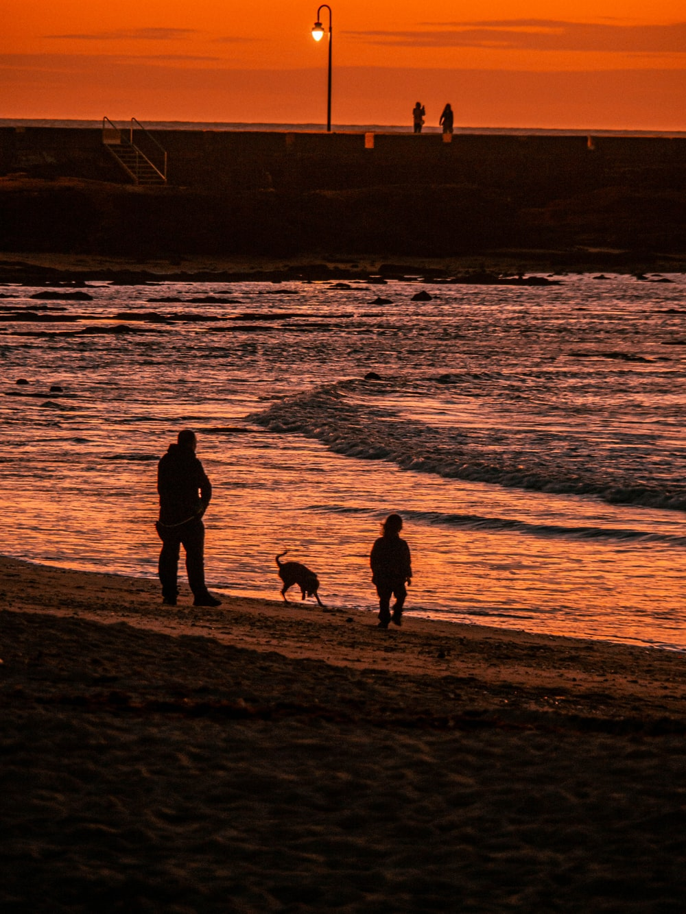 man standing near dog and child near seashore during golden hour