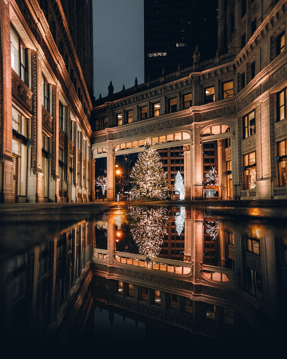 body of water beside Christmas tree