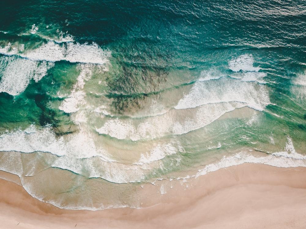 aerial photograph of beach