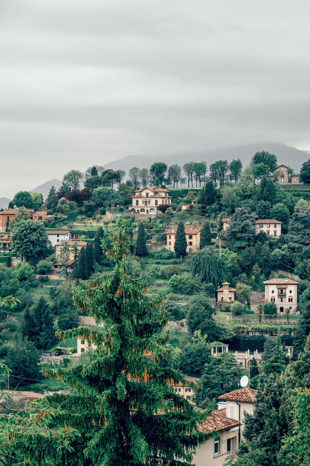 white concrete houses on hill