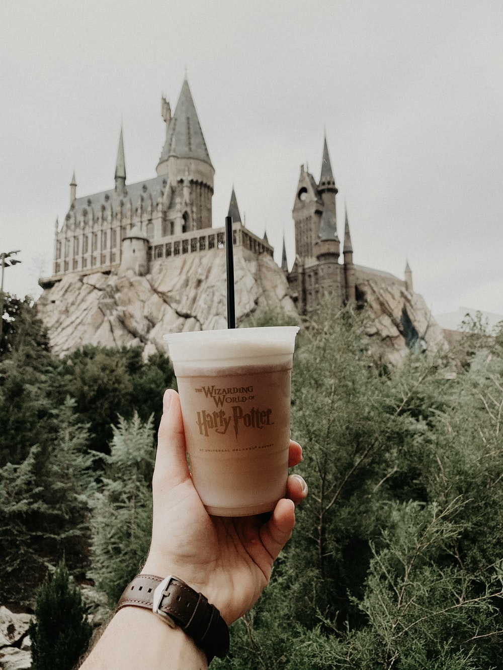 person holding Harry Potter drink cup in front of castle