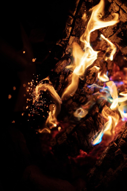 lighted bonfire photograph