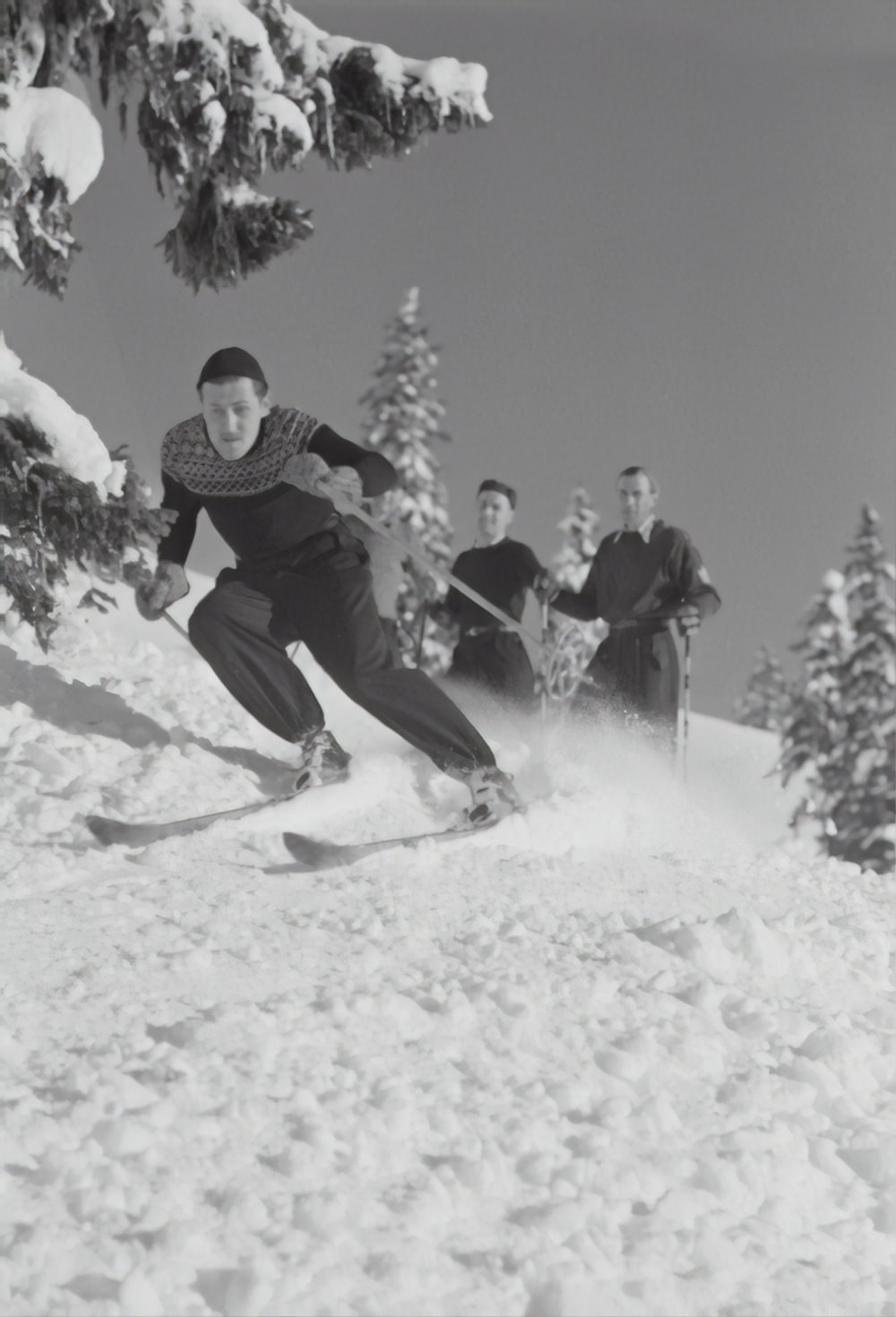grayscale photography of people doing nordic skiing