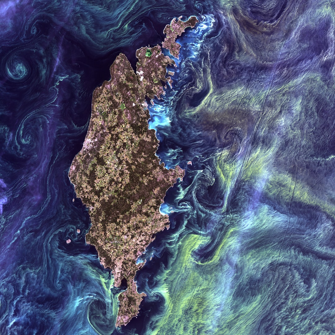"""In the style of Van Gogh's painting """"Starry Night,"""" massive congregations of greenish phytoplankton swirl in the dark water around Gotland, a Swedish island in the Baltic Sea. Phytoplankton are microscopic marine plants that form the first link in nearly all ocean food chains. Population explosions, or blooms, of phytoplankton, like the one shown here, occur when deep currents bring nutrients up to sunlit surface waters, fueling the growth and reproduction of these tiny plants."""