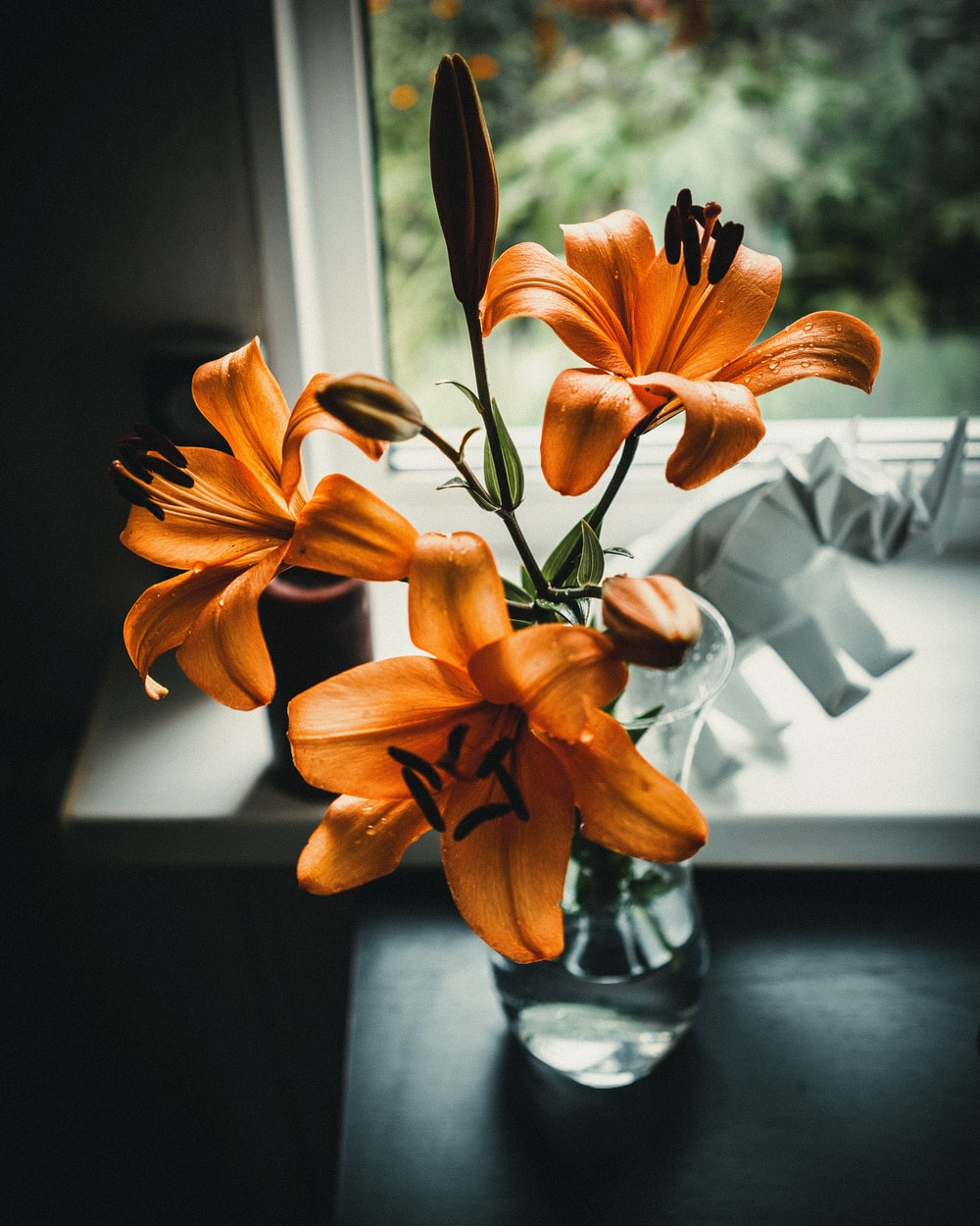 selective focus photography of brown petaled flower centerpiece beside wall