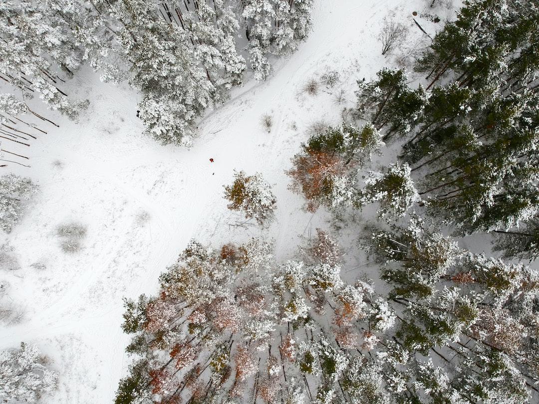 First snow in Voronezh, Russia