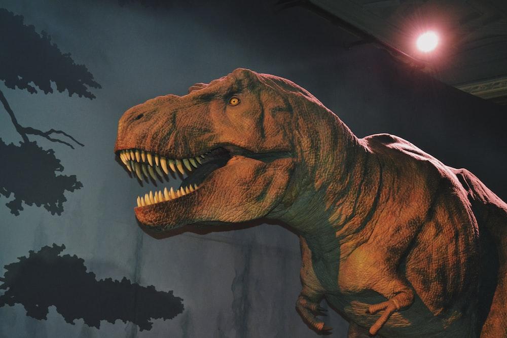 brown and black dinosaur illustration